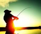 Запрет на рыбалку 2019 в Подмосковье